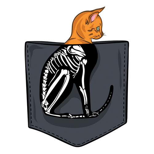 Cat skeleton pocket